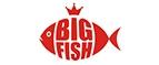 Купоны и промокоды «Big Fish»